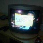 """""""TV a gato"""""""