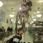 """Atração mais procurada """"Rex"""" do filme (Uma noite no museu)"""