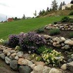Rock garden beside the house