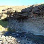 Fósiles marinos