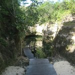 Nature trail to cenote