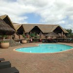 Pool at Game Lodge
