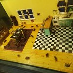 cockroach kitchen!!