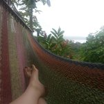 Lake Arenal from the hammock