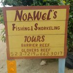 NoaWels Excellent Snorkeling experience