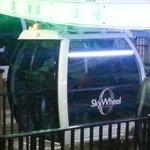 Skwheel capsule