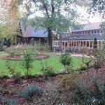 Inner garden area