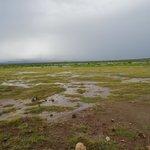 unterwegs im Amboseli
