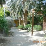 Botanischer Garten / Bungalows
