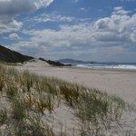 Ocean Beach North