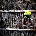 little hanging flower planter - so japanese