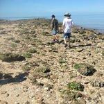 the boys exploring