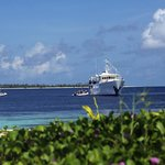 Guests board Pelagian dive yacht directly from the resort