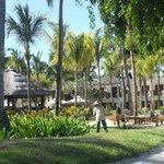 jardins vus de la plage magnifiquement entretenus