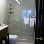 Beautiful Bathroom with Enclosed Shower