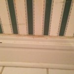 Bathroom wall and baseboard