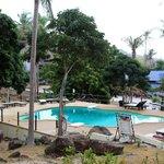 Alfnas_Shiralea_pool