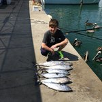 Photo de Capt. Jay's Deep Sea Fishing Miami