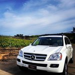 All luxury Mercedes-Benz for all Private and Group WineTours. Wine tasting in comfort and style!