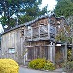 Treehouse cottage/room