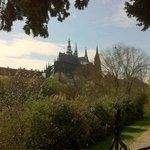 Castello dal royal garden