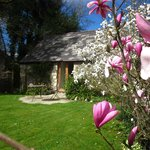 Spring time is just stunning in this garden