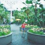 Tea Garden with cute fountain sprinklers :-)