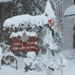 We've got your snow!!