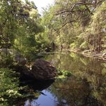 Slow moving creek