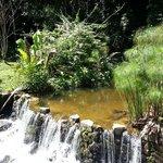 Cachoeira passando dentro da área da pousada