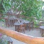 table en petite section