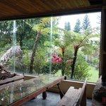 向陽山民用餐區窗外景觀