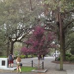 Entrance to Forsyth Park