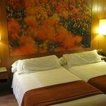 2 camas grandes