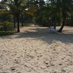 Green Beach Area