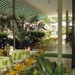 Foto de Hotel Leda