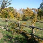 Esterno: i colori dell'autunno