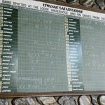 The board showing game seen that day