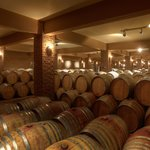 The 1.000 barrique cellar!
