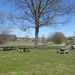Woodside Farm tables, trees & view