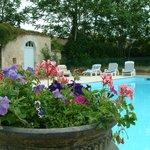 Beautiful, heated, large swimming pool