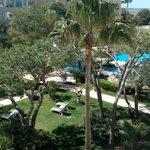 piscina y zona ajardinada