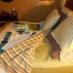 Super plush sleigh bed. Best sleep ever!!
