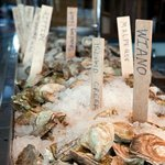 Serving the Widest, Freshest Selection of Raw Oysters on the Ice Daily