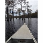 Canoe Ride at George L. Smith Park