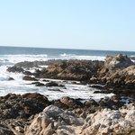 Nearby coastline