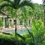 pool und bungalow