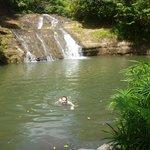 Swimming at Mt.Carmel Waterfalls