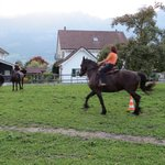 The owner working her horse behind the B&B