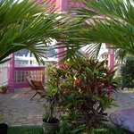 Nature showing its grace at Beya Suites